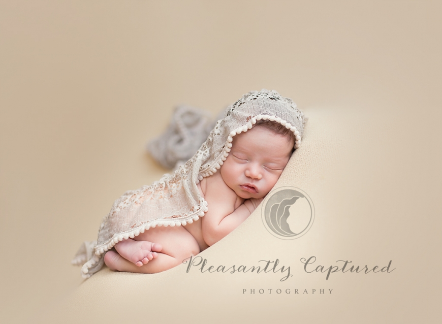 P i n newborn girl in tushie pose with beautiful scarf draped over her pleasantly captured photography newborn photography