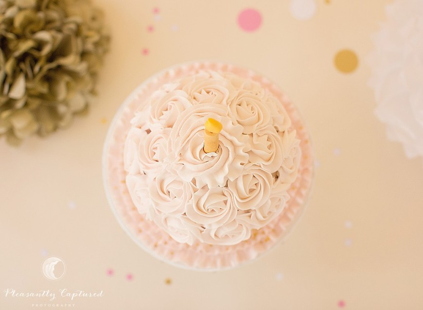 View from above of custom cake smash cake - Pleasantly Captured Photography - Jacksonville NC Photographer